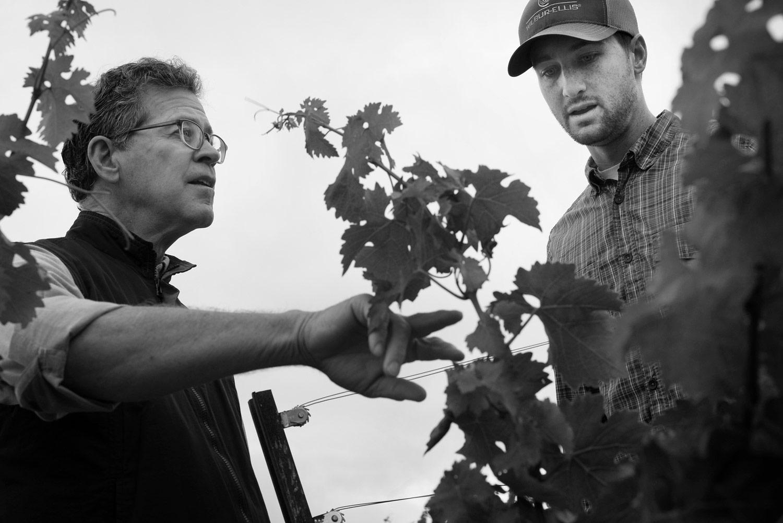 Paul Hobbs teaching in vineyard