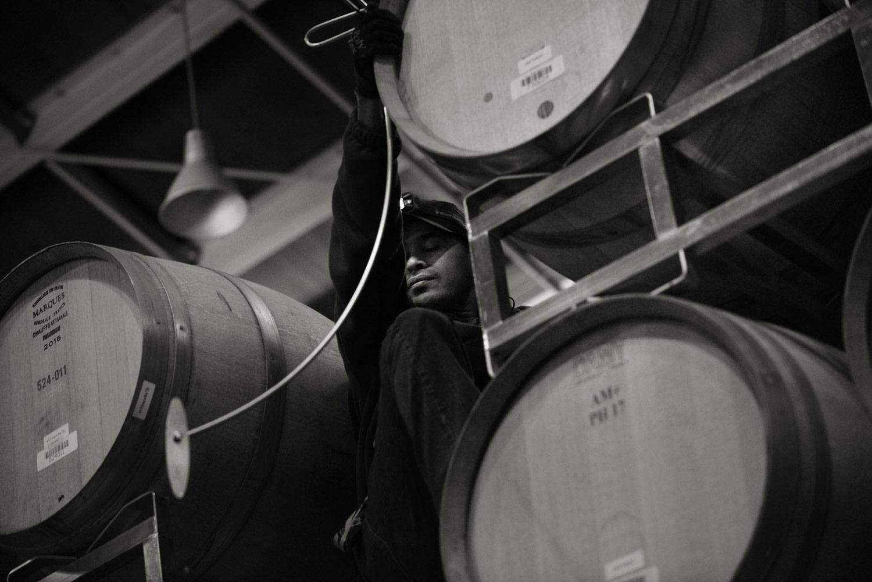 Cellar worker